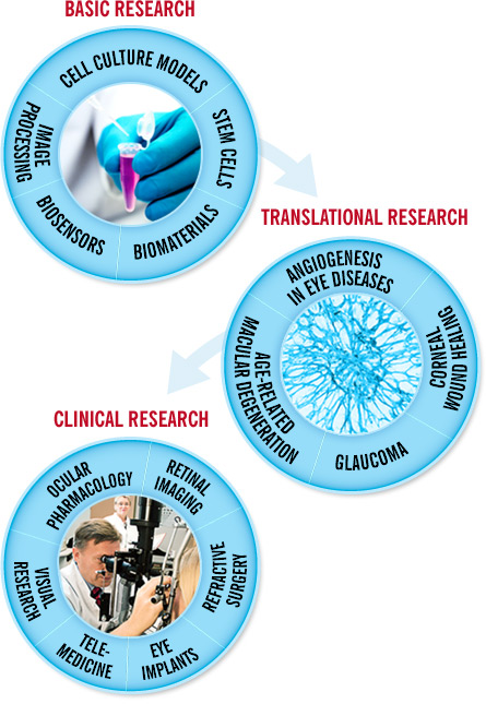 Basic research, translational research and clinical research